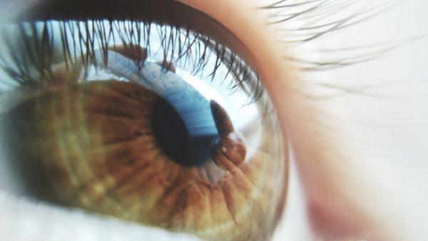 עיניים חומות מביטות לאופק